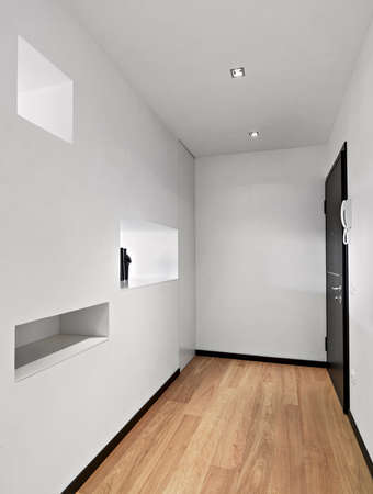 niches: interior view of a modern entrance of apartment with niches and wood floor