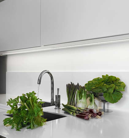 foeniculum vulgare: vegetables on the worktop near to sink in a modern kitchen