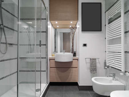 contemporary interior: interior view of a modern bathroom with glass shower cubicle Stock Photo
