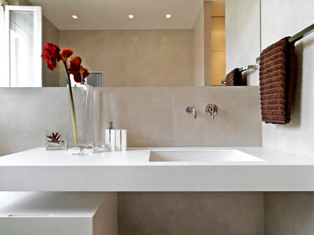 interior view of modern bathroom in foreground on washbasin with vase of red flowers