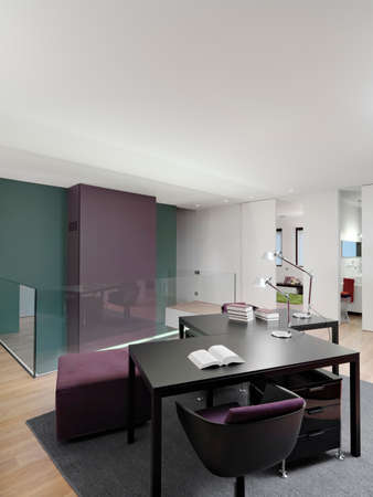 interior view of a modern studio in the aprtment with desk and carpet overlooking on the bathroom