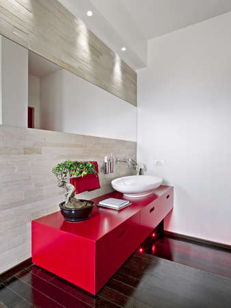 interior shot of a modern bathroom in foreground the red washbasin cabinet the floor is made of wood