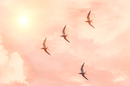 Flock of sea gulls flies against the sunset sky of pink shades, sun shine glare