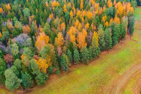 Aerial view over forest edge at the field in autumn Stock fotó