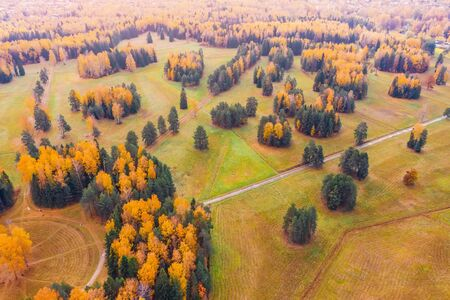 Aerial view flight over autumn valley park with meadows, bright trees Banco de Imagens