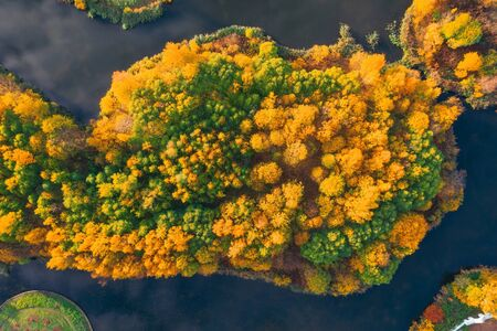 Aerial view from a height of an autumn forest on an island among a lake