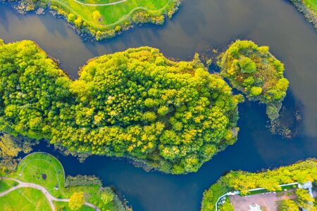 Islands in dense green forests in lakes and ponds, aerial top view