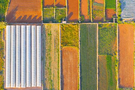 Aerial agricultural landscape, separated fields by bushes of plants, and next to the greenhouse 스톡 콘텐츠