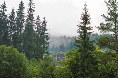 the slopes of the mountains, forest, hills, morning fog, abandoned, ruined building Stok Fotoğraf