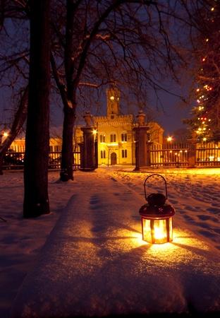 Park im winter Lizenzfreie Bilder