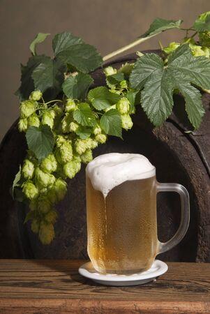 beer Stock Photo - 10481333