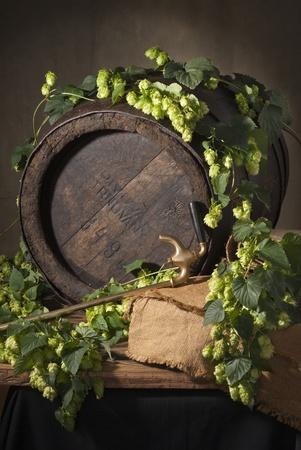 still life with hops Imagens