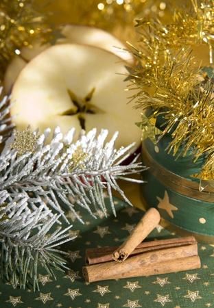 christmas decoration Stock Photo - 10559529