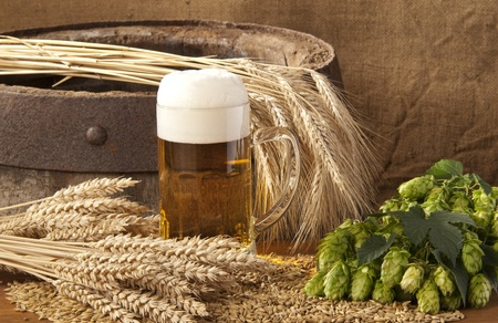 barley malt: beer Stock Photo