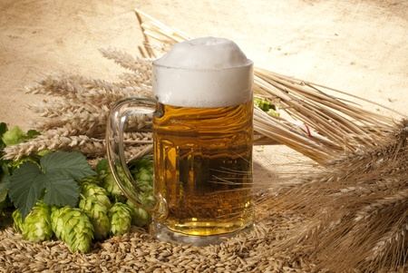 beer Stock Photo - 10559542