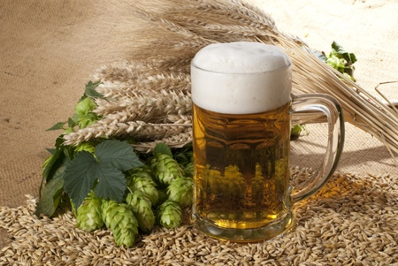 beer Stock Photo - 10559545