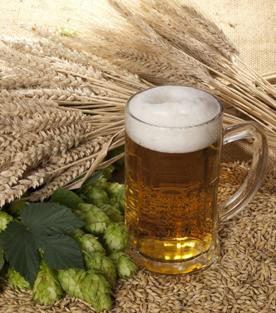 beer Stock Photo - 10566274