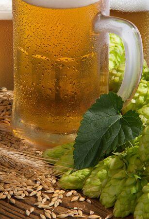beer Stock Photo - 10572209