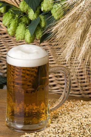 beer Stock Photo - 10572207