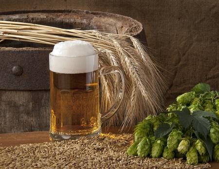 beer Stock Photo - 10572201