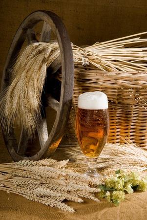 beer Imagens