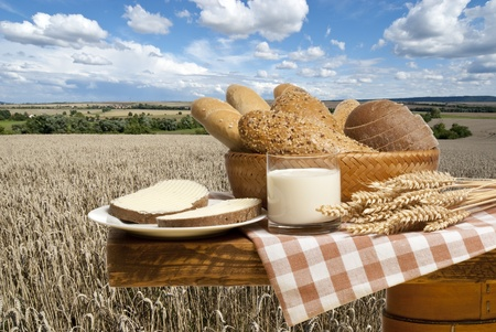 grain and cereal products: still life with bread Stock Photo