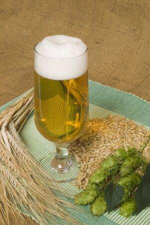 beer Stock Photo - 10600916