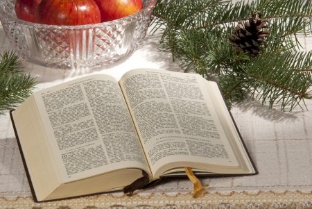 advent time: bible