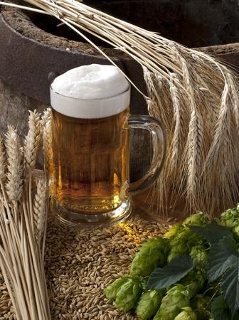 beer Stock Photo - 10600926