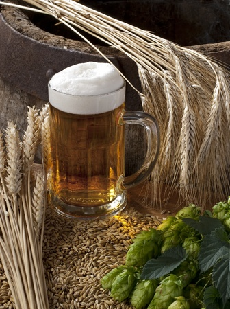 beer Stock Photo - 10600926