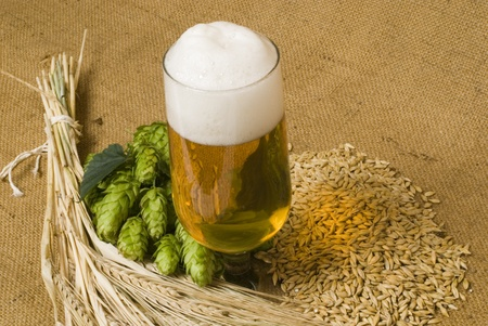draft beer: beer Stock Photo