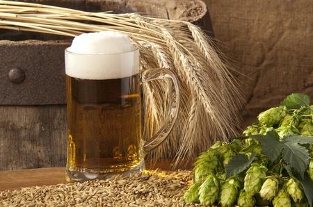 brouwerij: bier