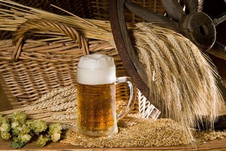 beer Stock Photo - 10601009