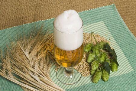 beer Stock Photo - 10601003