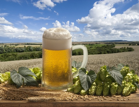 beer  Stock Photo - 10617152