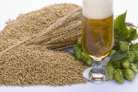 beer Stock Photo - 10816266