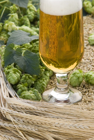 beer glass Stock Photo - 10816262