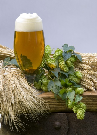 still life with beer Stock Photo - 10816168
