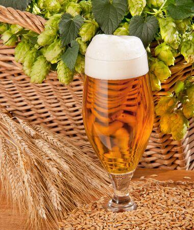 beer Stock Photo - 12679857
