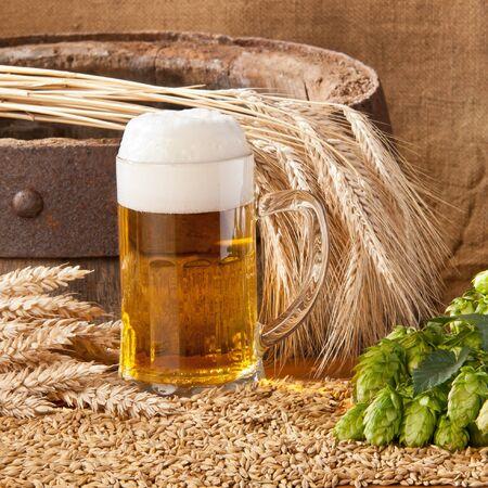 beer Stock Photo - 12679858