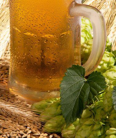 beer Stock Photo - 12679874