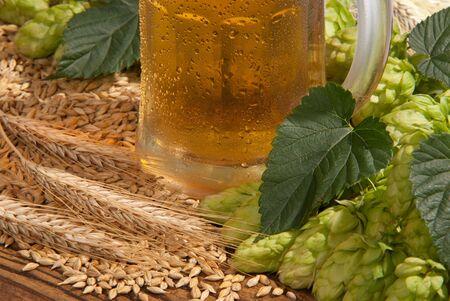 beer Stock Photo - 12892214