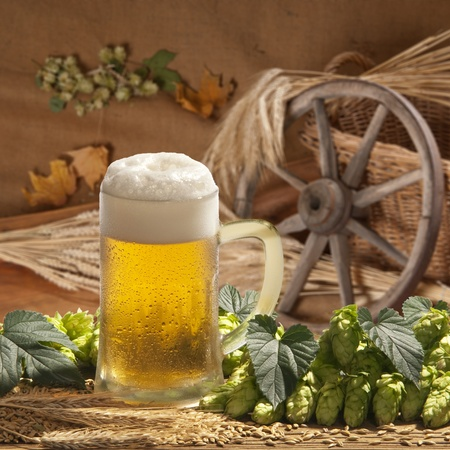 beer Stock Photo - 12892217