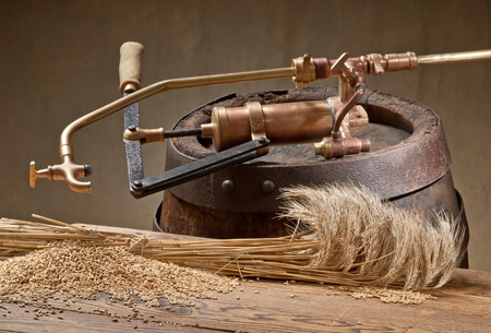 still life with barley photo
