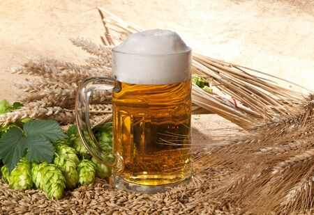 beer Stock Photo - 14077950