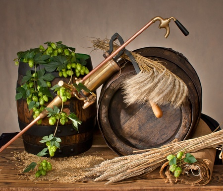 still life with barrel and hops photo