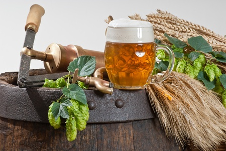beer Stock Photo - 14957195