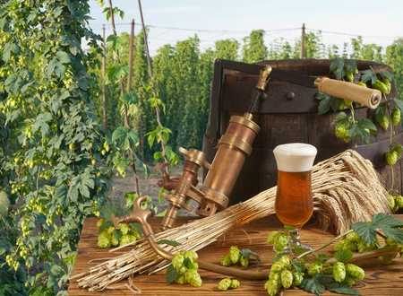 still life with beer Stock Photo - 14916109