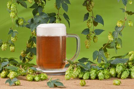 hopgarden: beer Stock Photo