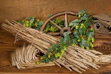 hopgarden: hops and wheat